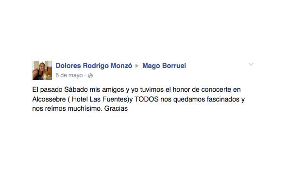 opinión hotel Mago Borruel